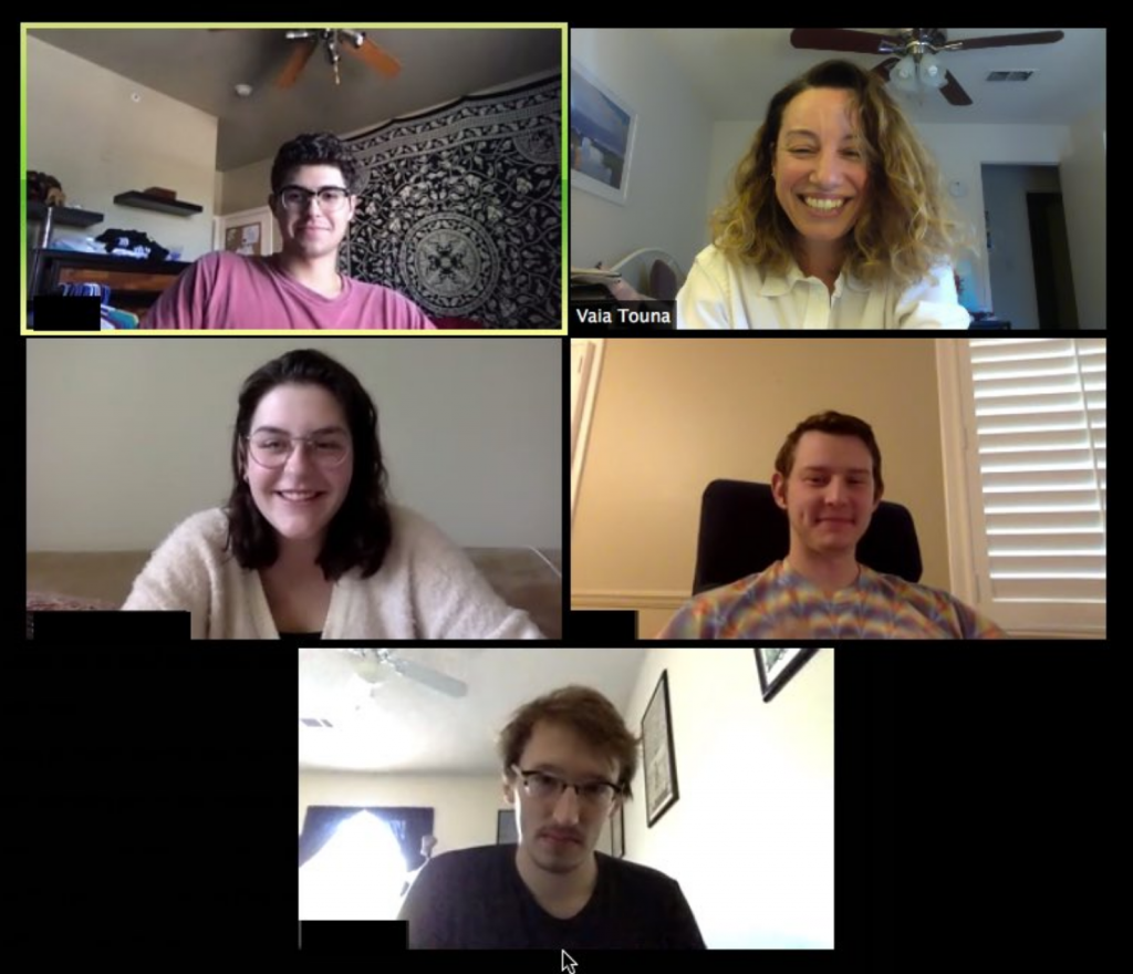 Screenshot of stdents in an REL seminar on video-conference